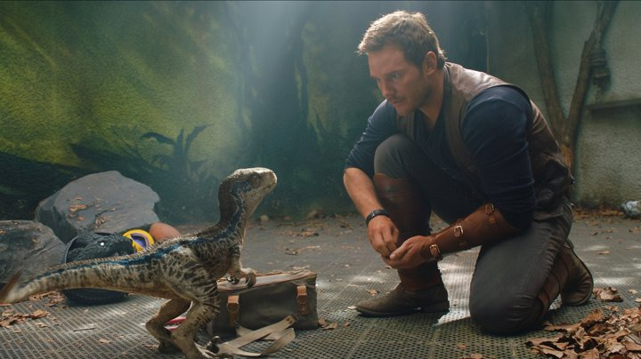 Jurassic World Fallen Kingdom lil blue