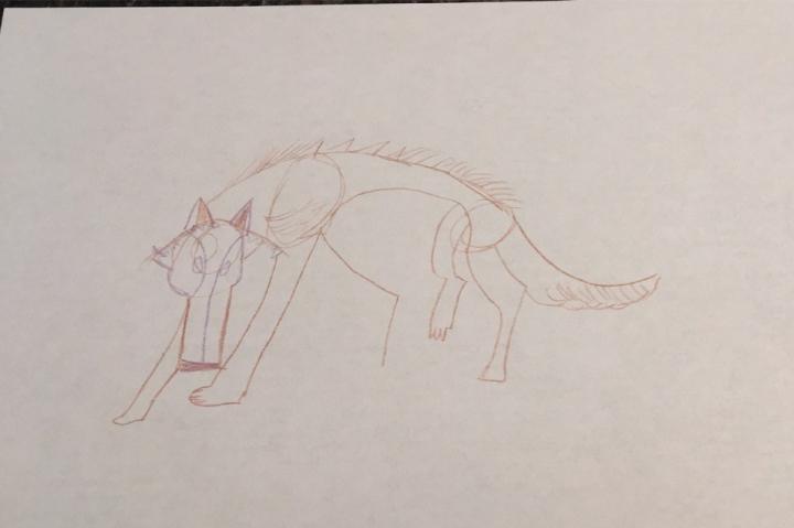 Wolfwalkers, wolf